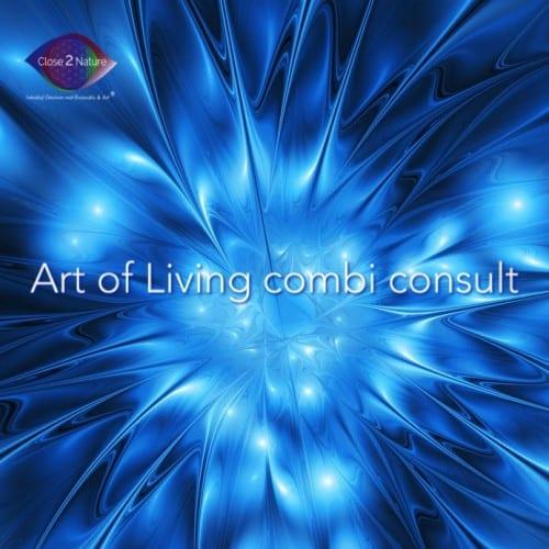 Art of Living combi