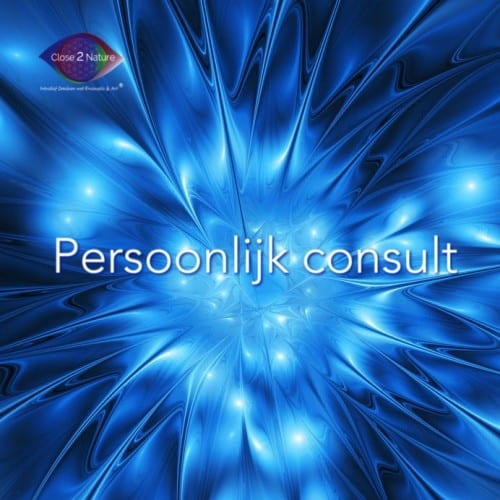 persoonlijk consult